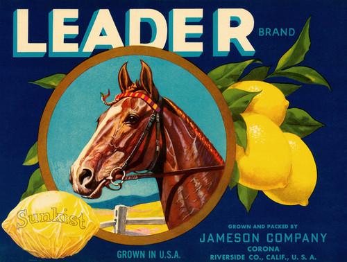 Art Prints of 044 Leader Brand, Fruit Crate Labels