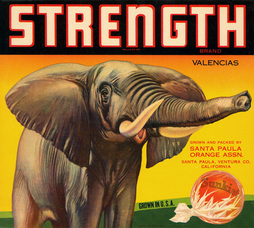 Art Prints of 053 Strength Brand, Fruit Crate Labels