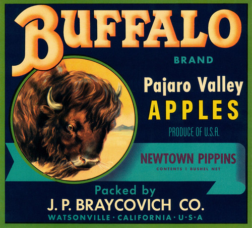 Art Prints of 059 Buffalo Brand Pajaro Valley Apples II, Fruit Crate Labels