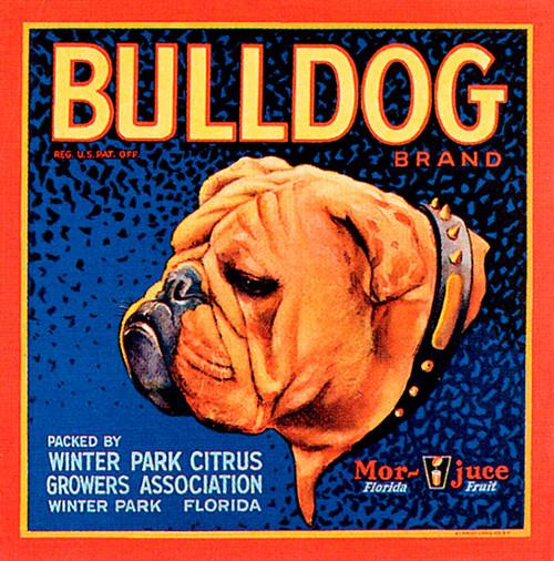 Art Prints of  Art Prints of 091 Bulldog Citrus, Fruit Crate Labels