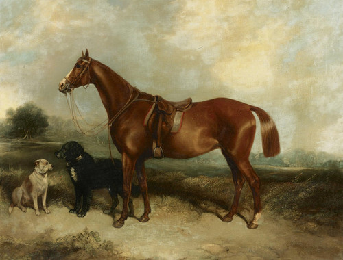 Art Prints of  Art Prints of A Chestnut Horse and Two Dogs by George Armfield