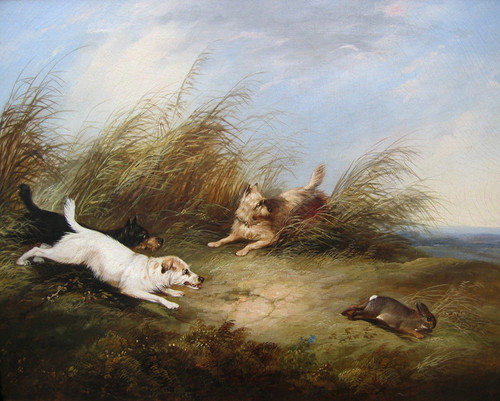 Art Prints of |Art Prints of Chasing a Rabbit by George Armfield
