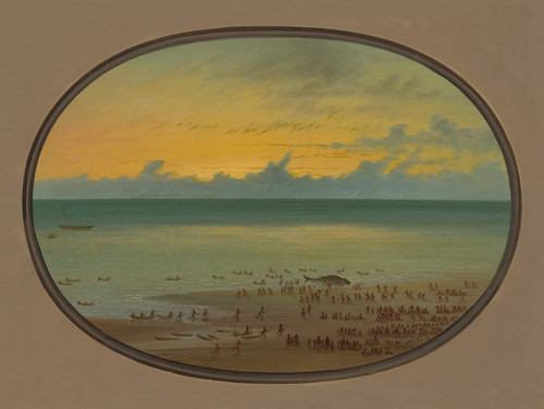 Art Prints of A Whale Ashore, Klahoquat by George Catlin