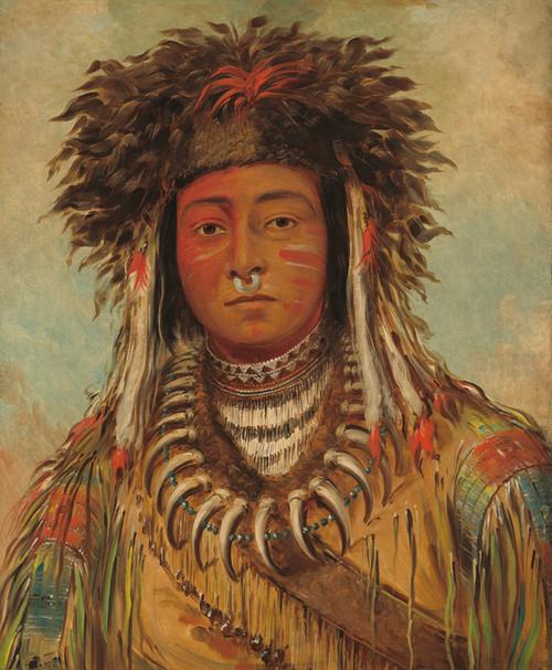 Art Prints of Boy Chief Ojibbeway by George Catlin