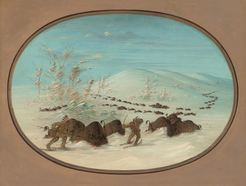 Art Prints of Buffalo Chase in the Snow Drifts by George Catlin