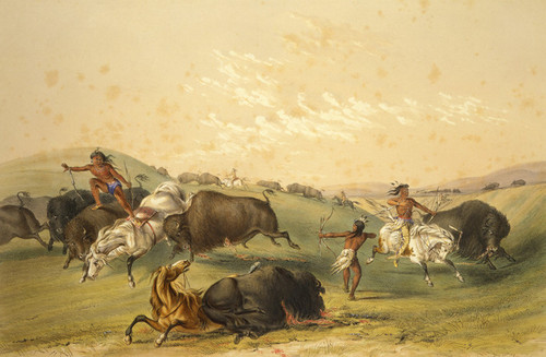 Art Prints of Buffalo Hunt by George Catlin