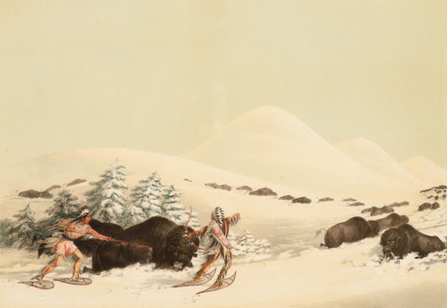 Art Prints of Buffalo Hunt on Snow Shoes Lithograph by George Catlin
