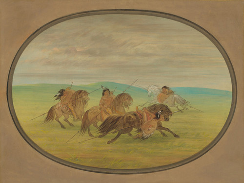 Art Prints of Camanchee Horsemanship by George Catlin