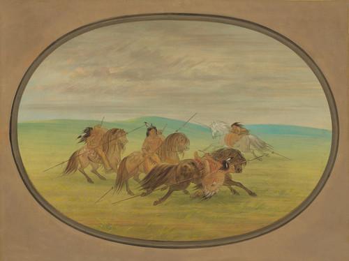 Art Prints of Camanchee Horsemanship by George Catlin