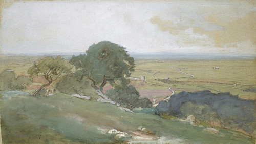 Art Prints of Olive Trees at Tivoli by George Inness