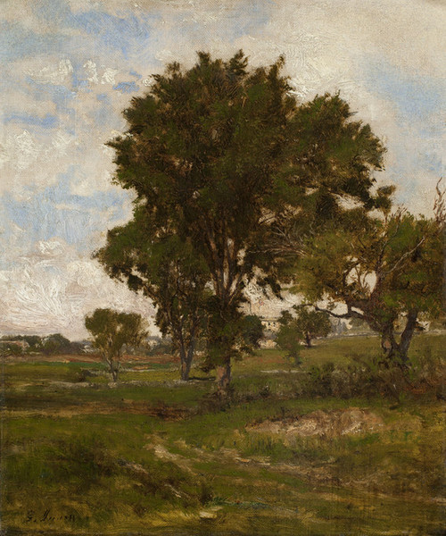 Art Prints of The Elm Tree by George Inness