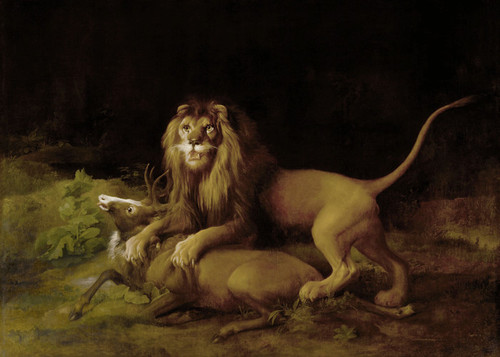 Art Prints of A Lion Attacking a Stag by George Stubbs