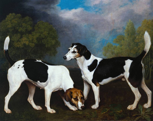 Art Prints of Couple of Foxhounds in a Landscape by George Stubbs