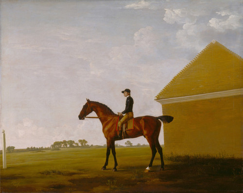 Art Prints of Turf with Jockey up at Newmarket by George Stubbs
