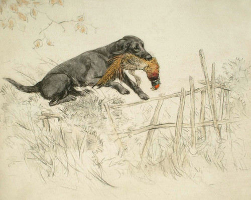 Art Prints of Well Over! Retrieved from the Pond by George Vernon Stokes