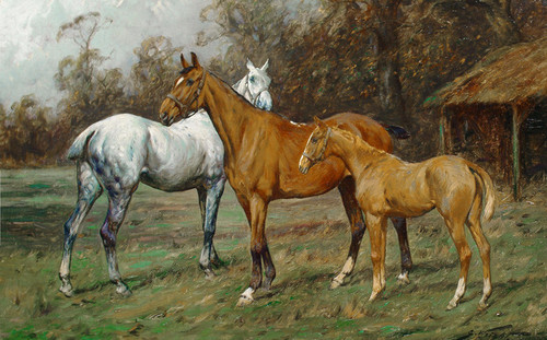 Art Prints of Horses in a Paddock by George Wright