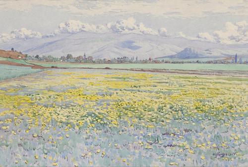 Art Prints of A Field of Wildflowers by Gunnar Widforss