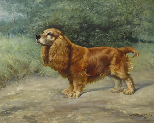 Art Prints of Portrait of Fuzzie by Gustav Muss-Arnolt