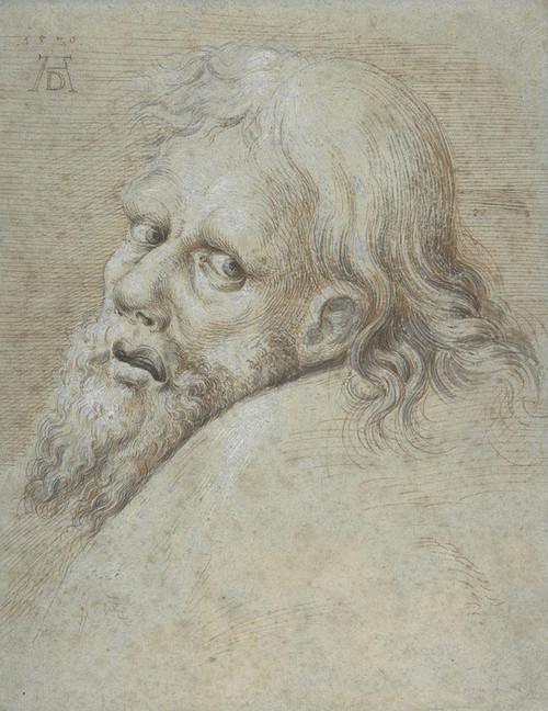 Art Prints of Head of a Bearded Man by Hans Hoffmann