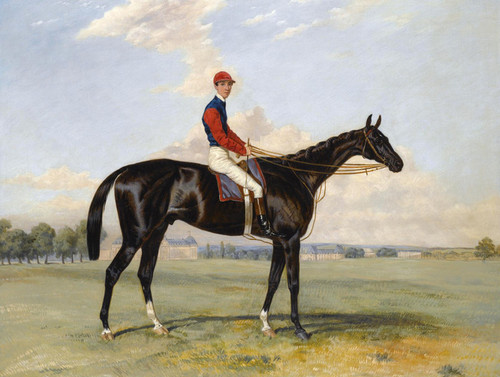 Art Prints of Comte Frederic Lagrange's Black Prince by Harry Hall