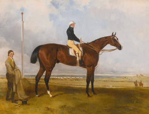 Art Prints of Lord Derby's Fazzaletto with Nat Flatman Up by Harry Hall