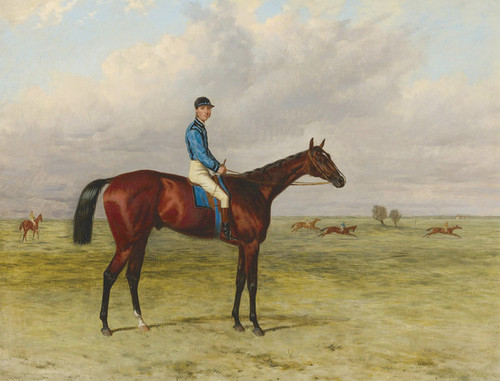 Art Prints of The Marquess of Hastings Bay Colt Lecturer by Harry Hall