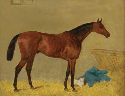 Art Prints of Hawthornden with a Cat in a Stable by Harry Hall
