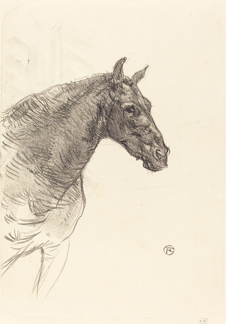 "1881 Art Print Home Decor Wall Art Poster C The White Horse /""Gazelle/"""