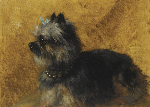 Art Prints of A Yorkshire Terrier by Henriette Ronner Knip