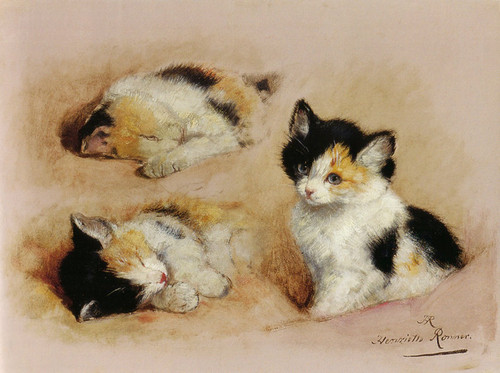 Art Prints of Studies of an Awakening Kitten by Henriette Ronner Knip