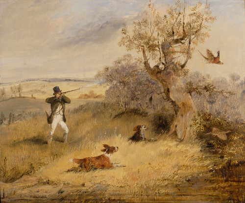 Art Prints of Pheasant Shooting by Henry Thomas Alken