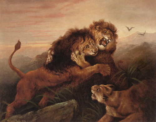 Art Prints of A Challenge to the King, 1873 by Heywood Hardy