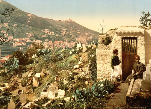 Art Prints of Part of the Cemetery, Algiers, Algeria (387070)
