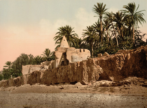Art Prints of Marabut Near Biskra, Algeria (387113)