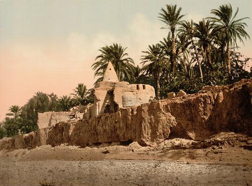 Art Prints of Marabut Near Biskra, Algeria (387113)