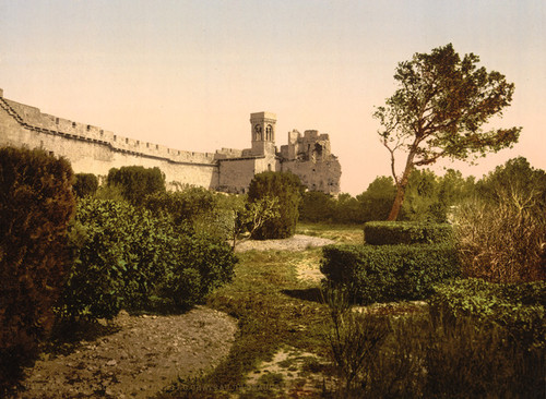Art Prints of Ruins, Beaucaire Castle, Tarascon, Pyrenees, France (387582)