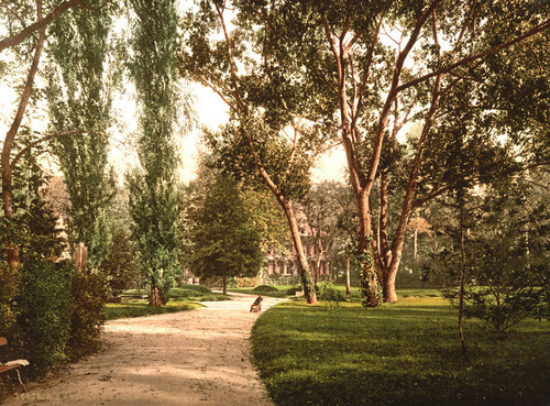 Art Prints of The Park, Vichy, France (387727)