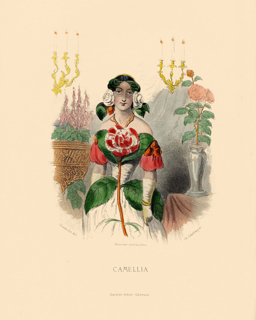 Art Prints of Camelia by J. J. Grandville