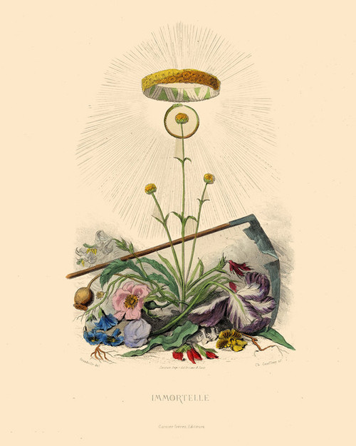 Art Prints of Everlasting by J. J. Grandville