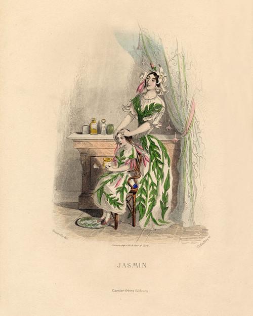 Art Prints of Jasmine by J. J. Grandville