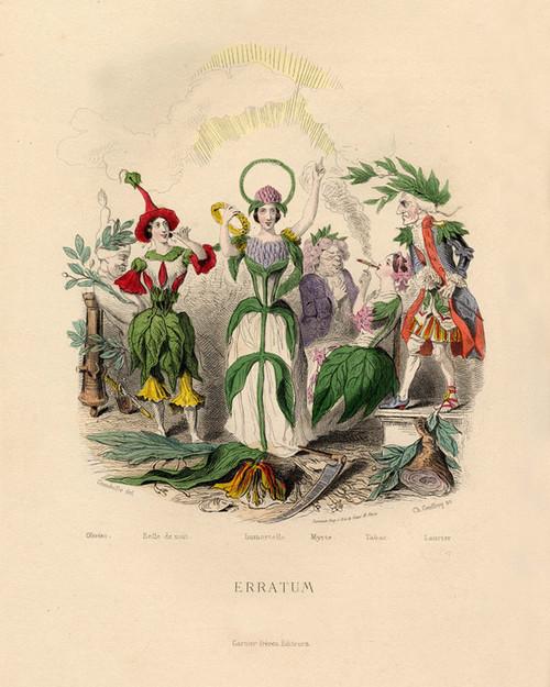 Art Prints of Olive, Marvel of Peru, Tobacco, Laurel, etc. by J. J. Grandville
