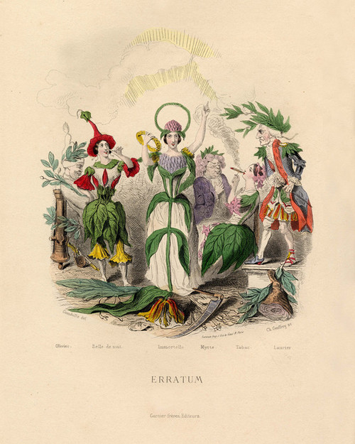 Art Prints of Olive, Marvel of Peru, Tobacco, Laurel, etc. by J. J. Grandville