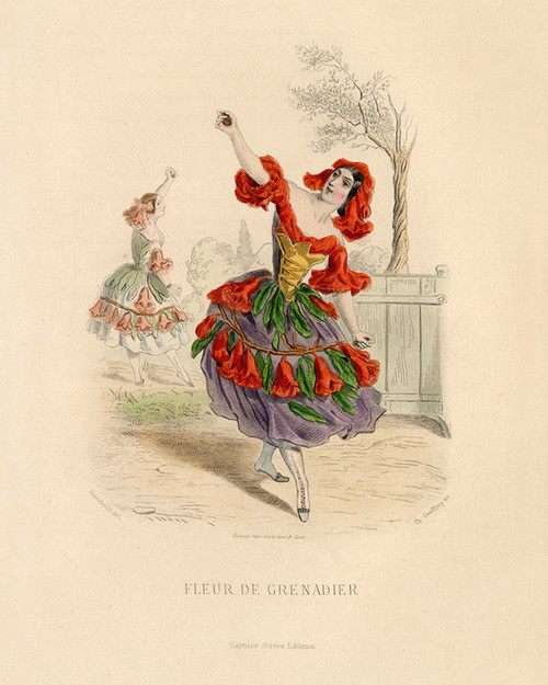 Art Prints of Pomegranate by J. J. Grandville