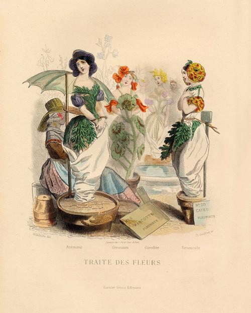 Art Prints of Flower Market, Anemone, Geranium, Gillyflower, etc. by J. J. Grandville