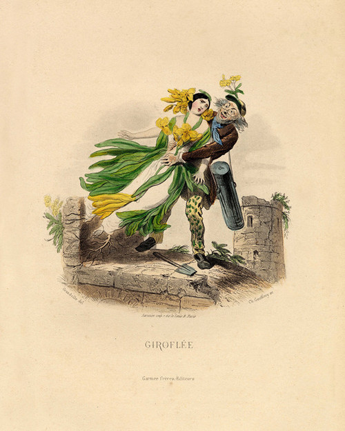 Art Prints of Wall Flower by J. J. Grandville