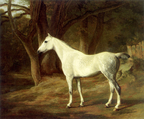 Art Prints of A Grey Hunter in a Wooded Landscape by Jacques-Laurent Agasse