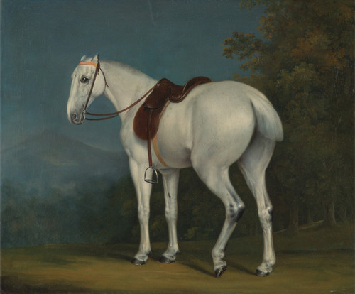 Art Prints of A Lady's Grey Hunter by Jacques-Laurent Agasse