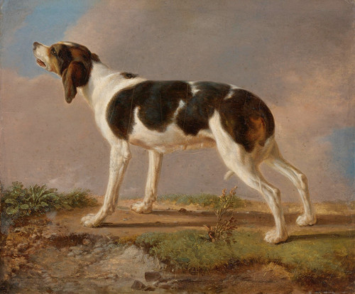 Art Prints of A Hunting Dog by Jacques-Laurent Agasse