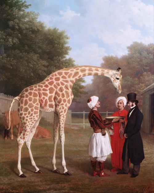 Art Prints of Nubian Giraffe by Jacques-Laurent Agasse
