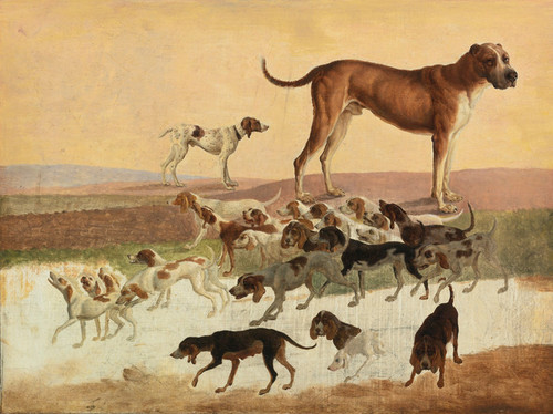 Art Prints of Study of Dogs by Jacques-Laurent Agasse